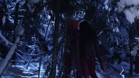 Dark silhouettes of two people moving in snowy winter forest at silent night. stock footage