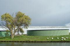 Dark skies above dutch greenhouse with green watersilos Royalty Free Stock Photo