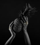 Dark-skinned hand with jewelry on a black background. Hands hold Stock Photos