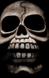 Dark skull horror picture. Skeleton face -  a macabre picture Royalty Free Stock Photos