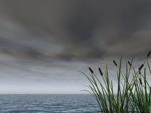 Dark sky Royalty Free Stock Photography