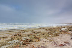 Dark sky beach skeleton coast Namibia. Dark sky rocky beach skeleton coast Namibia, Africa. Where the desert meets the atlantic ocean. Waves rolling and spray stock images