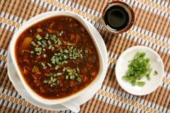 Dark spring vegetable soup with leek Stock Photos
