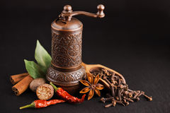 Dark still-life with different spices and retro Royalty Free Stock Images