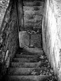 Dark stone steps with autumn leaves. A flight of outdoor in autumn dark stone steps leading downwards in monochrome Royalty Free Stock Images