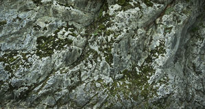 Dark stone wall texture background. Stone wall texture background in forest royalty free stock image
