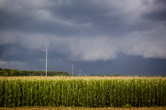 Dark Storm Clouds over Corn Fields Stock Photos