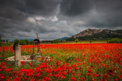 Dark storm over Trevi medieval village and red field of poppies in Umbria. Italy stock images