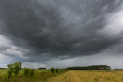 Dark stormy clouds over corn field at summer Stock Photography