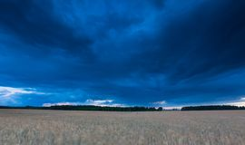 Dark stormy clouds over corn field at summer Royalty Free Stock Photos