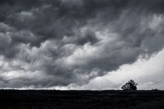 Dark stormy clouds over the plain, Lone tree in the field in fro stock image