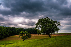 Dark stormy sky over trees and farm fields in York County Stock Photography