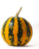 Dark Striped Orange Pumpkin isolated Royalty Free Stock Image