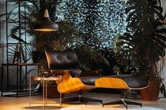 Dark Studio With Plants Stock Image