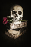 Dark style still life with a skull. Altered with a dark grunge texture stock photo