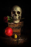 Dark style still life with a skull. Altered with a dark grunge texture stock photos