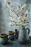 Dark tea set with a branch of blossoming apricots. Dark background stock photo