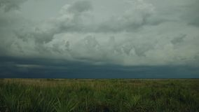 Dark Thunderstorm Rolls in Over Florida Prairie, 4K. Beautiful day turns to dark sky in a matter of seconds as a thunder storm rolls in over South-Central stock footage