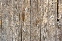 Dark timber wall background Stock Image