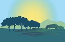 Dark Trees And The Sun Rising Royalty Free Stock Photos