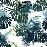 Dark and bright tropical leaves with jungle plants. Seamless vector tropical pattern with green palm and monstera leaves. stock illustration