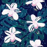 Dark tropical pattern with white orchids Royalty Free Stock Image