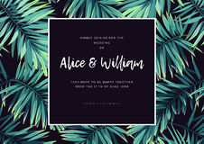 Dark tropical wedding design with exotic plants. Vector tropical background with green phoenix palm leaves. Stock Image