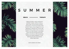 Dark vector tropical typography design with green jungle palm leaves. Space for text. Royalty Free Stock Photography