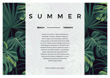 Dark vector tropical typography design with green jungle palm leaves. Space for text. Royalty Free Stock Image