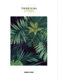 Dark vector tropical typography postcard design with green jungle palm leaves. Space for text. Royalty Free Stock Photography