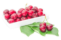 Dark vinous cherry berries served in square white dish Stock Images