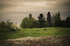 Dark vintage rural landscape Stock Photos