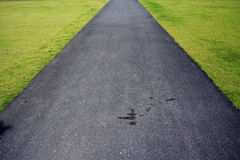 Dark walkway in a green grass Royalty Free Stock Image