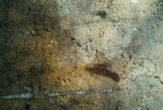 Dark wall texture grunge rough style Royalty Free Stock Image