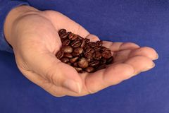 Palm full of coffee. Dark warm coffee beans cupped in hand Royalty Free Stock Photos