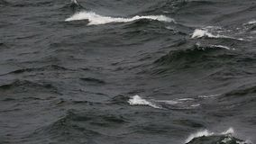Dark waves in the sea. On a cloudy windy day stock video