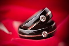 Dark Wedding Rings on Red Petals Stock Photo