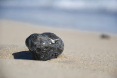 Dark wet stone at the beach Royalty Free Stock Photos