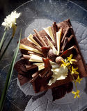 Dark and white chocolate cake. Food, gastronomy,culinary,cookery Royalty Free Stock Image
