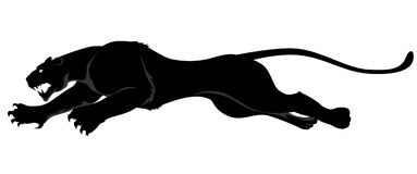 Dark wild cat vector illustration