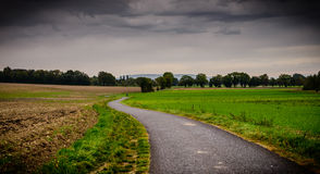 Dark and windy path in the autumn Royalty Free Stock Photography