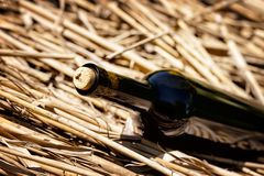 Dark wine bottle with a cork Stock Images