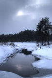 Dark winter landscape. With forest reflecting in a pond stock photos