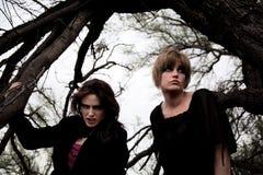 Dark women in a forest. Mysterious women together in a dark barren forest Stock Photo
