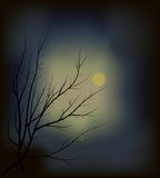 Dark wood and the moon Royalty Free Stock Image