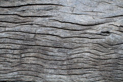 Dark wood texture. Abstract background Stock Photo