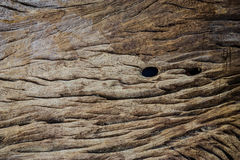 Dark wood texture. Royalty Free Stock Photo
