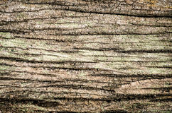 Dark wood texture background Royalty Free Stock Image