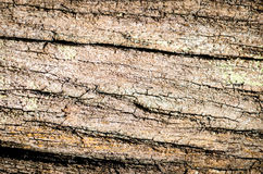 Dark wood texture background Stock Image