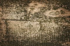 Dark wood texture background surface with old natural pattern or dark wood texture. Grunge surface with wood texture background. Stock Images